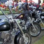Gois Bike Festival