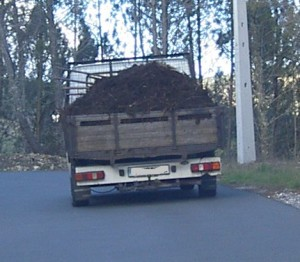Shit truck